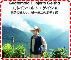 エルインヘルト・ゲイシャ  100g  2400円   (ガテマラ産珈琲豆)