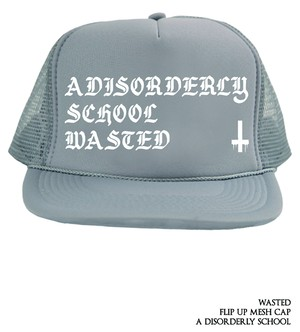 a disorderly school / flipup mesh cap<gray>