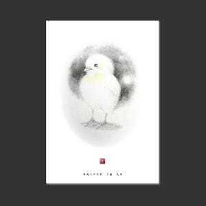 2017年度年賀状(ポストカード・1枚)