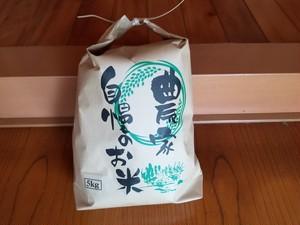 【新米】2019年新潟県関川村産コシヒカリ5kg(送料無料)