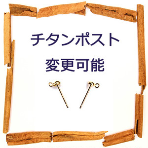 【変更パーツ】チタンピアス