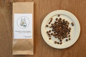 【豆販売】Ethiopia Yirgacheffe Koke Honey G1(100g)