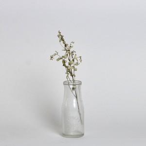Bottle / ボトル【A】〈花瓶 / フラワーベース / 一輪挿し〉