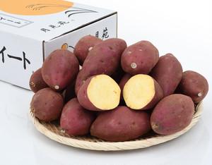 月見苑のシルクスイート〔焼き芋、スイートポテト、サツマイモ、さつまいも、シルクスイート、スイートサラダ、送料無料〕