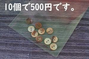 貝のボタン 1.1cm 11mm 【10個セット】