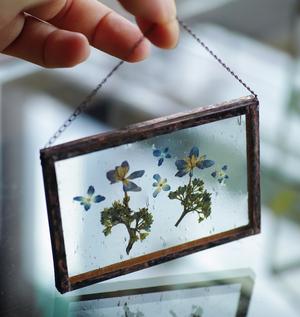 植物絵画:押し花『紫陽花』twins