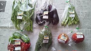 えがおファーム 季節の野菜お試しセット