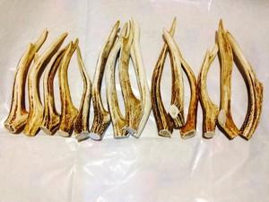 蝦夷 鹿の角ミドル~ロングタイプ細め3本セット (北海道特産 犬用おやつ エゾシカの角ペットフード 先端)