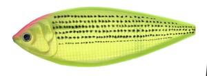 ConyBait180 ダブルチャートゴールドコノシロ F