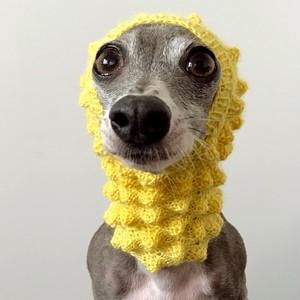 ツクツクボーシ Banana