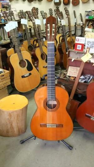 ジャパンオールドShinanoGuitar No.63クラシックギター