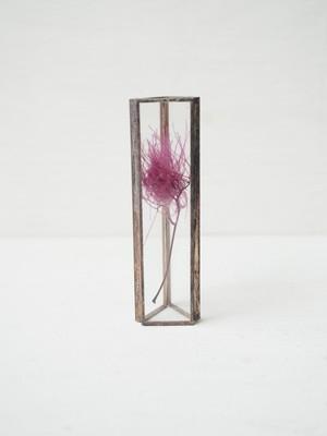 HACOMIDORI 植物標本 スモークツリー pink(小)