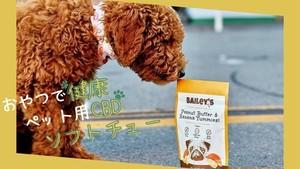 """""""小型犬セット""""【おやつdeサプリ そふとちゅ~】ピーナッツバター&バナナ味(5個入)+肉球クリーム"""