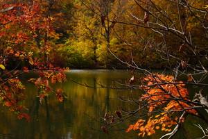 秋の小谷村の景観、雨飾山、鎌池の紅葉(デジタルコンテンツ)