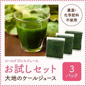 【3daysお試しセット】 無添加・冷凍コールドプレスジュース「大地のケールジュース」3パック