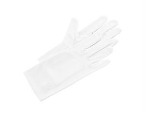 マイクロファイバー手袋Lサイズ 超極細繊維 10組入り AR-632-SP