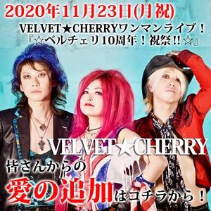 【愛の支援カード】11/23(月祝) VELVET★CHERRY