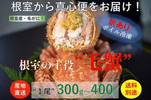 北海道根室産【堅蟹】【訳あり品】活ボイル冷凍毛ガニ【総重量300g〜400g/尾】数量限定販売