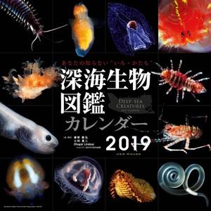 【セール販売】カレンダー「深海生物図鑑」2019