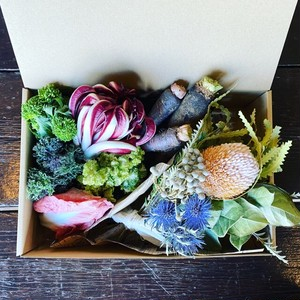 『無農薬イタリア洋野菜とドライフラワーのセットBOX』〈Mサイズ〉