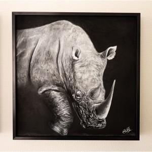 Rhino in Monochrome