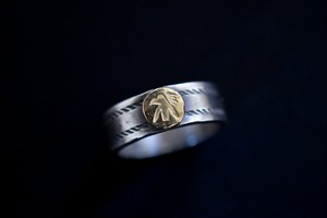 Luck twist line 18k thunderbird ring