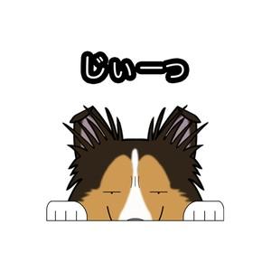 見てまステッカー【シェルティー】シェットランドシープドッグ 犬 ステッカー シール