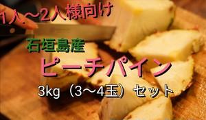【送料無料】石垣島のピーチパイン3kgセット(3〜4玉)