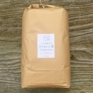 スペルト小麦石臼挽全粒粉 5kg【栽培期間中 農薬・化学肥料不使用】