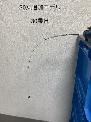 ステンレス穂先 30乗H(さんまる じょうH)上向きガイド仕様