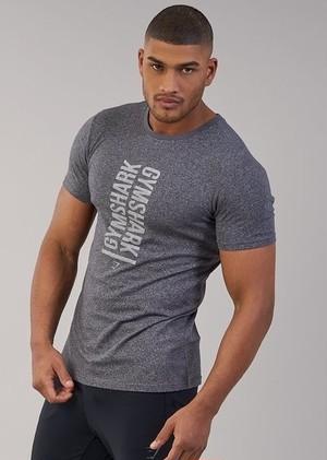 GymShark ジムシャーク Tシャツ statement t-shirt  – チャコール【charcoal marl】 メーカー直輸入品!