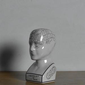 Phrenology Head 【L】 / フレノロジー ヘッド〈オブジェ・置物・人体模型・解剖〉SB2012-0027