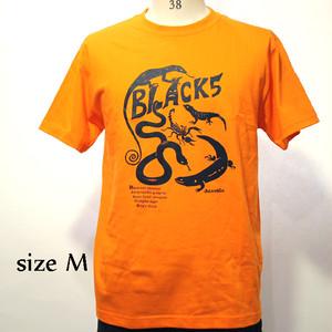 BLACK5Tシャツ(BLACK T-Shirts)