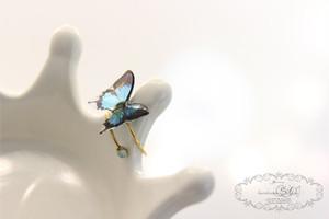 蝶のリング(クリア)