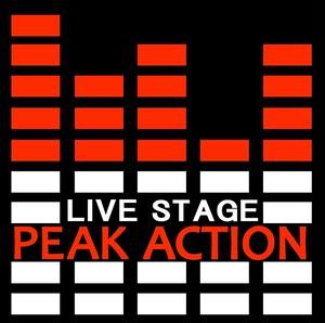 PEAK ACTIONステッカー10cm×10cm