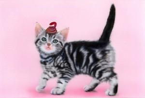 【印刷物】ポストカード:ヘビのせ猫