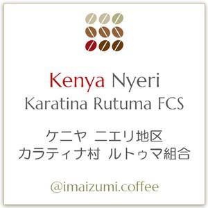 【送料込】ケニヤ ニエリ地区 カラティナ村 ルトゥマ組合 - Kenya Nyeri Karatina Rutuma FCS - 300g(100g×3)