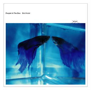 CD 『Bird Hotel』