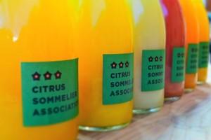 【冬限定】柑橘ジュース詰め合わせ 4本セット