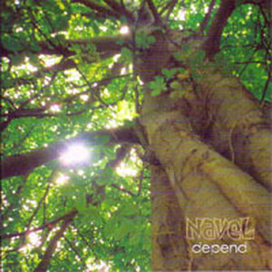 NAVEL [depend] (CD)