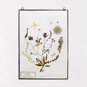 Botanical Frame L017 - Copper
