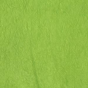 王朝のそめいろ 厚口 30番 浅緑