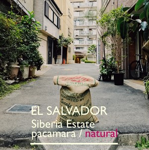 EL SALVADOR [natural]-中浅煎- 200g