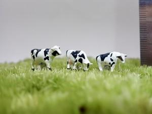 牛《苔テラリウム・コケリウム用ミニチュアフィギュア》