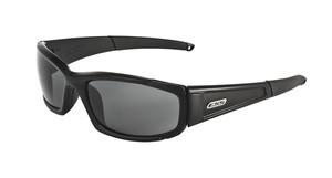 ESS CDI 2LENS (フレーム:ブラック)(レンズ:クリアー、スモークグレイ)