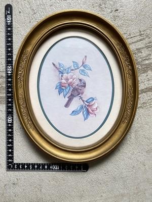 アメリカ 雑貨 壁掛け フォトフレーム ビンテージ made in USA 鳥