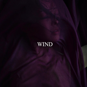 WIND/ m. movie