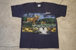 USED Alaska T-shirt M 90s made in USA T0236