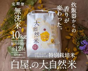 【定期購入/1ヶ月毎】大自然米【無洗米】10kg x 12回(1年間)10%お得!