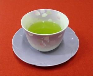 嬉野特上煎茶100g1,100円5本セット